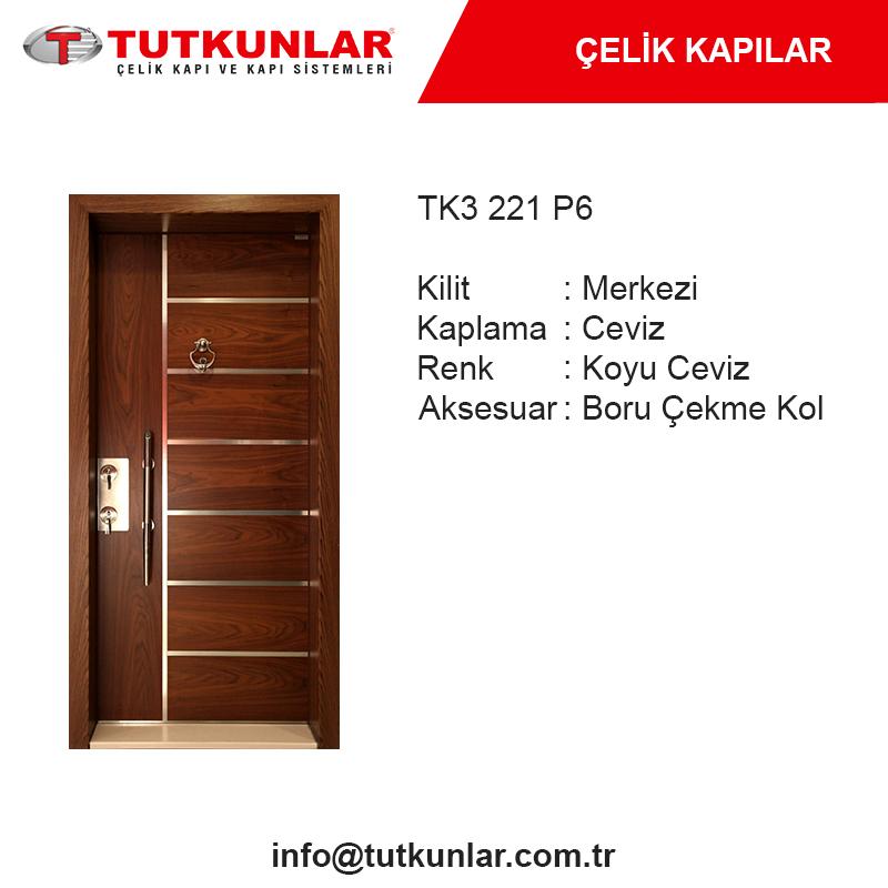 Çelik Kapı TK3 221 P6